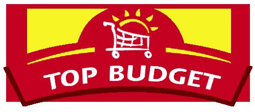 Logo Top Budget
